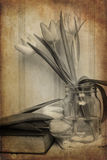 Still life image of Spring flowers with vintage texture filter e Stock Photography