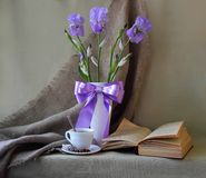 Still life with iris Stock Images