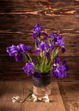 Still life with iris. Es on brown wooden background Royalty Free Stock Photo