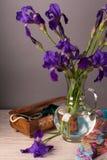 Still life with iris. Es and jade with jewelery Stock Image