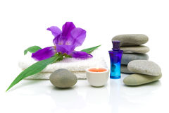 Still life of items for the spa treatments Stock Images