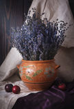Still life with lavender in a clay jug and plums on the table. Royalty Free Stock Photography