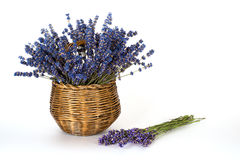 Still life with lavender on a white background Stock Photo