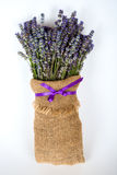 Still life with lavender on a white background Stock Photography