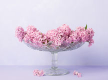 Still life  with Lilac Bouquet on light violet background Royalty Free Stock Image
