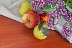 Still life with lilac pears and apples Stock Photos
