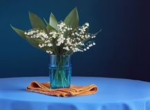 Still life with lilies in a glass on a blue background. Stock Images