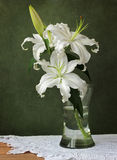 Still life with lilies. On a green background Royalty Free Stock Photography