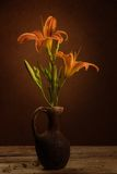 Still life with lily Stock Photography