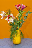 Still Life Of Lily Flowers Stock Photography