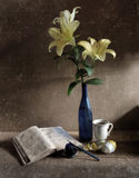 Still Life with Lily Royalty Free Stock Image