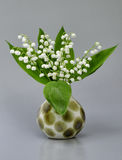 Still-life lily of the valley Stock Image