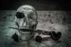 Still life love skull Stock Photo