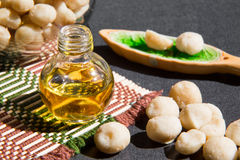 Still life with Macadamia oil in the bottle and Royalty Free Stock Photography