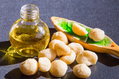 Still life with Macadamia oil in the bottle and Royalty Free Stock Images