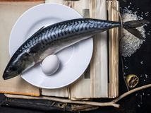 Still life with mackerel. Still life on the theme of food made with a vintage charm, prepared for printing Stock Images