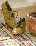 Still life with man shoes, flower pot and woven rug Stock Photos