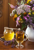 Still life from medicinal herbs, honey, herbal tea Stock Image
