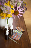 Still life from medicinal herbs and medicines Stock Images