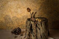 Still Life Metaphorical roses . Stock Photography