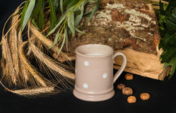Still life milk. Still life with dotted mug, milk, wheat ears, leaves and bark on the black background Royalty Free Stock Photos