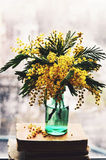 Still life with mimosa in green bottle on a window sill Royalty Free Stock Photos