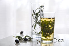 Still-life with mint tea Stock Photos