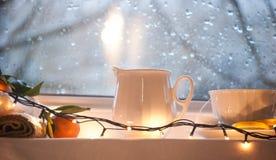 Still life winter Royalty Free Stock Photos