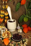 Still-life with mortar, dried fruit and flowers. Autumn still-life with mortar, dried fruits and dry flowers Royalty Free Stock Images