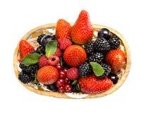 Still life multifruit Stock Image