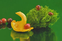 Still life with mushrooms and berries and moss Royalty Free Stock Photography