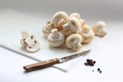 Still life of mushrooms Stock Image