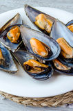 Still Life with mussels Stock Photography