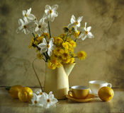 still life with narcissuses and dandelions Royalty Free Stock Photo