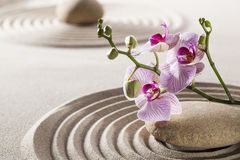 Still-life for natural femininity and pampering. Orchids set in curves of sand and zen pebble in asian feng-shui garden Royalty Free Stock Photo