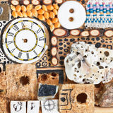 Still life from natural and mechanical objects Stock Image