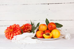 Still life with  nectarine Stock Photography