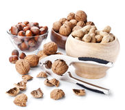Still life with nuts and nutcracker on white Royalty Free Stock Photography