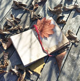 Still life with old book and shadows Royalty Free Stock Photography