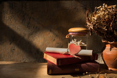 Still life with old book,shell and dried roses in clay vase Stock Photography