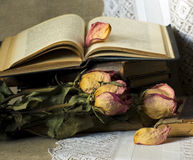 Still life with old books. And dried roses Royalty Free Stock Images