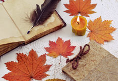 Still life with old books, fallen leaves and candle. Vintage still life with open book, quill, candle and autumn fallen leaves on white planks. Memory books and Royalty Free Stock Images