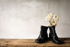 Still life old child deteriorate  and dry wizen Royalty Free Stock Images