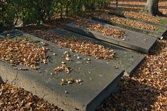Still life of old Dutch gravestones in autumn season Royalty Free Stock Images