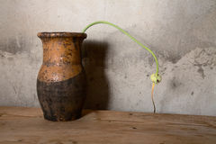 Still-life with an old jug against  wall Royalty Free Stock Photos