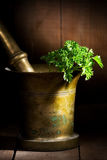 Still life with old mortar Stock Photo