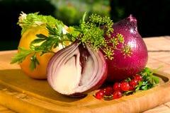 Still life with onion Royalty Free Stock Photos