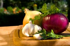 Still life with onion Stock Photography