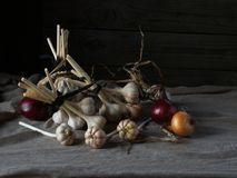Still life of onion and garlic bulbs. Bulbs artistically located on the table Stock Images