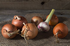 Still life with onion and garlic on old wooden table. Stock Image